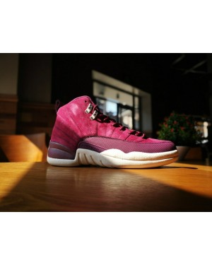 Air Jordan 12 Bordeaux/Metalen Zilver-Sail 130690-617 Voor Heren